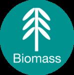 S icon biomass